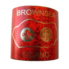 Sparkly Woggle - Red